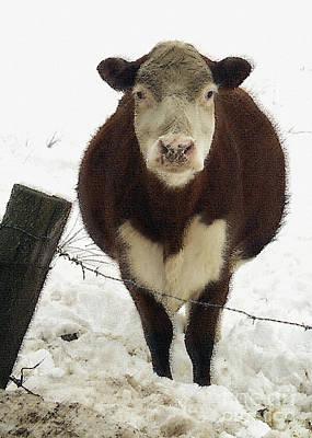 Neighbor's Cow Poster by Andrew Govan Dantzler