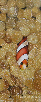 Nemo Hiding - Orange Clownfish Poster by Christiane Schulze Art And Photography