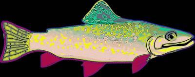 Neon Rainbow Trout Poster by Florian Rodarte