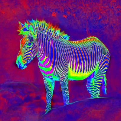 Neon Zebra Poster by Jane Schnetlage