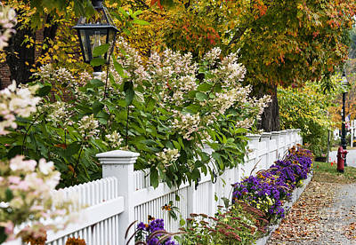 New England Picket Fence  Poster by John Greim