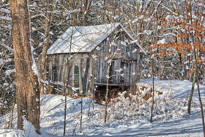 New England Winter Woods Poster by Bill Wakeley