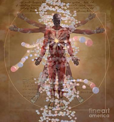 New Vitruvian Man Poster by Jim Dowdalls