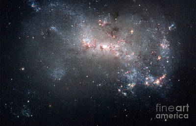 Ngc 4449, Irregular Galaxy Poster by Science Source