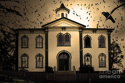 Night Of The Birds . Sepia . 7d12487 Poster by Wingsdomain Art and Photography