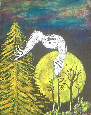 Night-owl Poster by Harold Greer