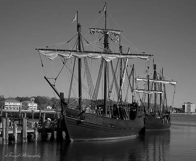 Nina And Pinta In Black And White Poster by Debra Forand