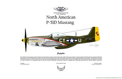 North American P-51d Mustang Gunfighter Poster by Arthur Eggers