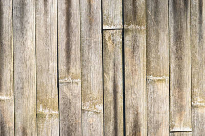Old Bamboo Fence Poster by Alexander Senin