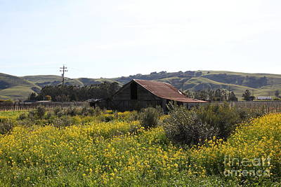 Old Barn In Sonoma California 5d22234 Poster by Wingsdomain Art and Photography