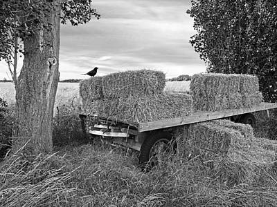 Old Hay Wagon In Black And White Poster by Gill Billington