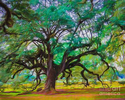Old Plantation Oak Poster by Perry Webster