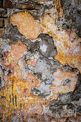 Old Wall Abstract Poster by Elena Elisseeva