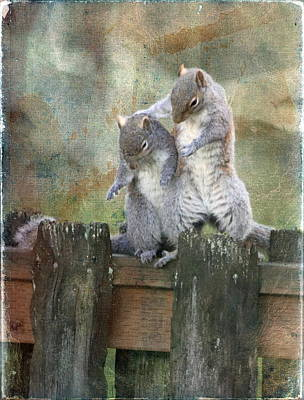 Only A Squirrel Knows Poster by Angie Vogel