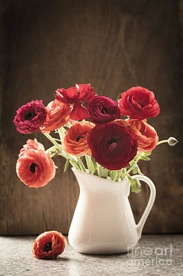 Orange And Red Ranunculus Flowers Poster by Jan Bickerton