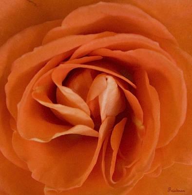 Orange Delight Poster by Michael Friedman