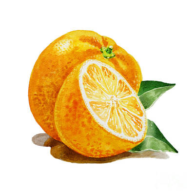 Artz Vitamins An Orange Poster by Irina Sztukowski