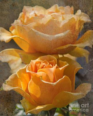 Orange Sherbet Poster by John Kain