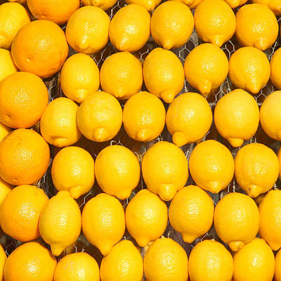 Oranges And Lemons Poster by Art Block Collections