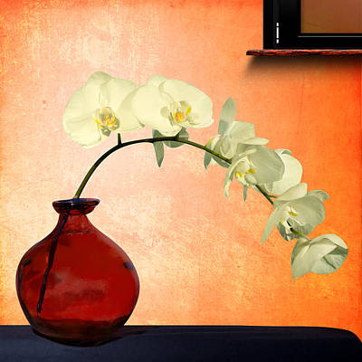 Orchids 2 Poster by Mark Ashkenazi