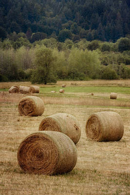 Oregon Hay Bales Poster by Carol Leigh
