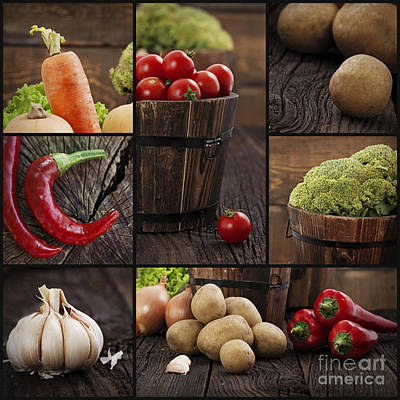 Organic Vegetables Collage Poster by Mythja  Photography
