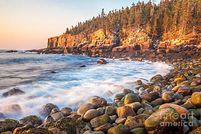 Otter Cliff Sunrise In Acadia Poster by Susan Cole Kelly