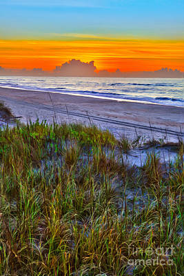 Outer Banks - Ocracoke Sunrise With Sand Dune Plants Poster by Dan Carmichael
