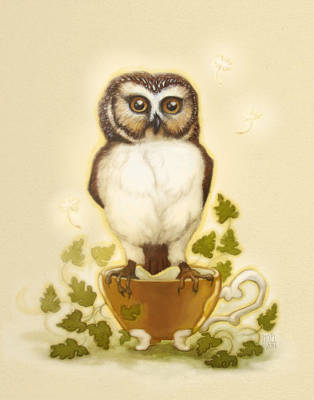 Owl And Teacup Poster by Catherine Noel