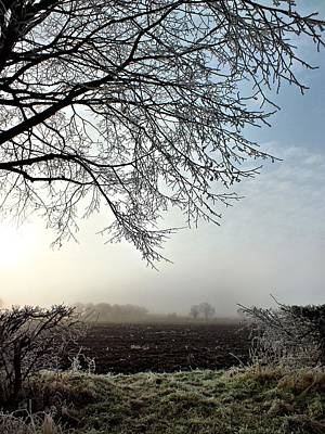 Oxfordshire Frost Poster by Lucy Antony