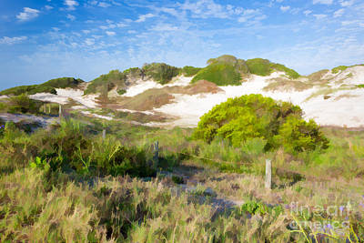 Paintography Of Nana Dunes American Beach Florida Poster by Dawna  Moore Photography
