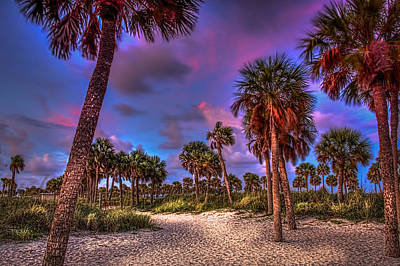 Palm Grove Poster by Marvin Spates