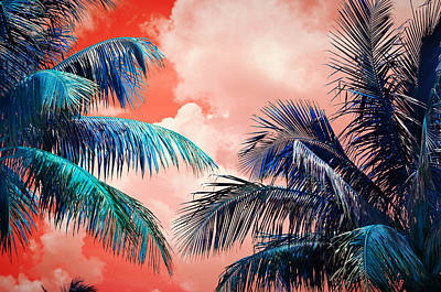 Palmscape Red Poster by Laura Fasulo