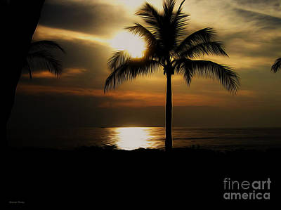 Palm Silhouette 2 Poster by Cheryl Young