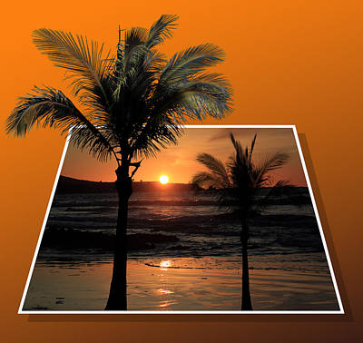 Palm Trees At Sunset Poster by Shane Bechler