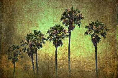 Palms 7 Poster by Pamela Cooper