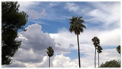 Palms And Clouds Poster by Glenn McCarthy Art and Photography
