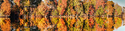 Panorama Of Fall Colors At Martin Dies Junior State Park - Jasper Piney Woods East Texas Poster by Silvio Ligutti