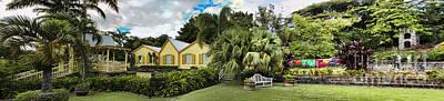 Panoramic Of Batik Studio In St  Kitts  Poster by David Smith