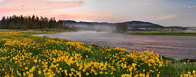 Panoramic Spring Poster by Leland D Howard