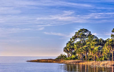 Paradise On The Gulf Poster by Marvin Spates