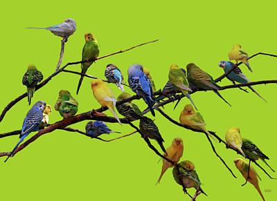 Parakeet Paradise Poster by DiDi Higginbotham