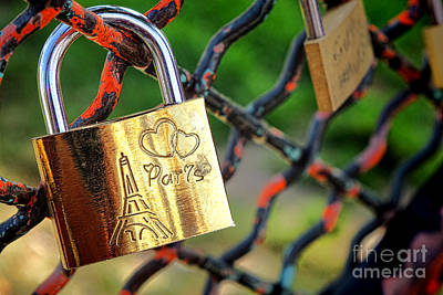 Paris Love Lock Poster by Olivier Le Queinec