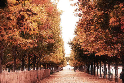Paris Tuileries Row Of Trees - Jardin Des Tuileries Autumn Fall Colors Tree Landscape  Poster by Kathy Fornal