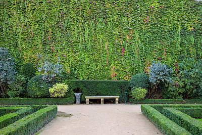 Park Bench Along Ivy Covered Wall Poster by Brian Jannsen