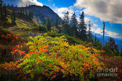 Park Butte Fall Color Poster by Inge Johnsson