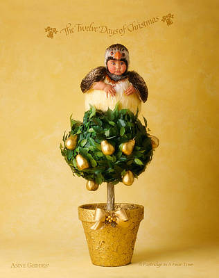 Partridge In A Pear Tree Poster by Anne Geddes