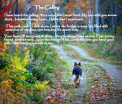 Paw Prints The Calling Poster by Sue Long
