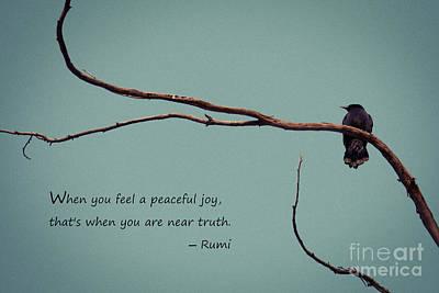 Peaceful Joy Poster by Stella Levi