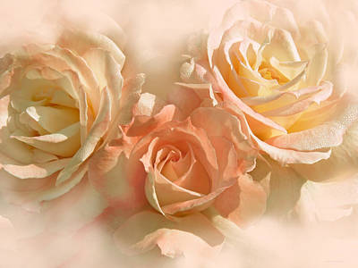 Peach Roses In The Mist Poster by Jennie Marie Schell